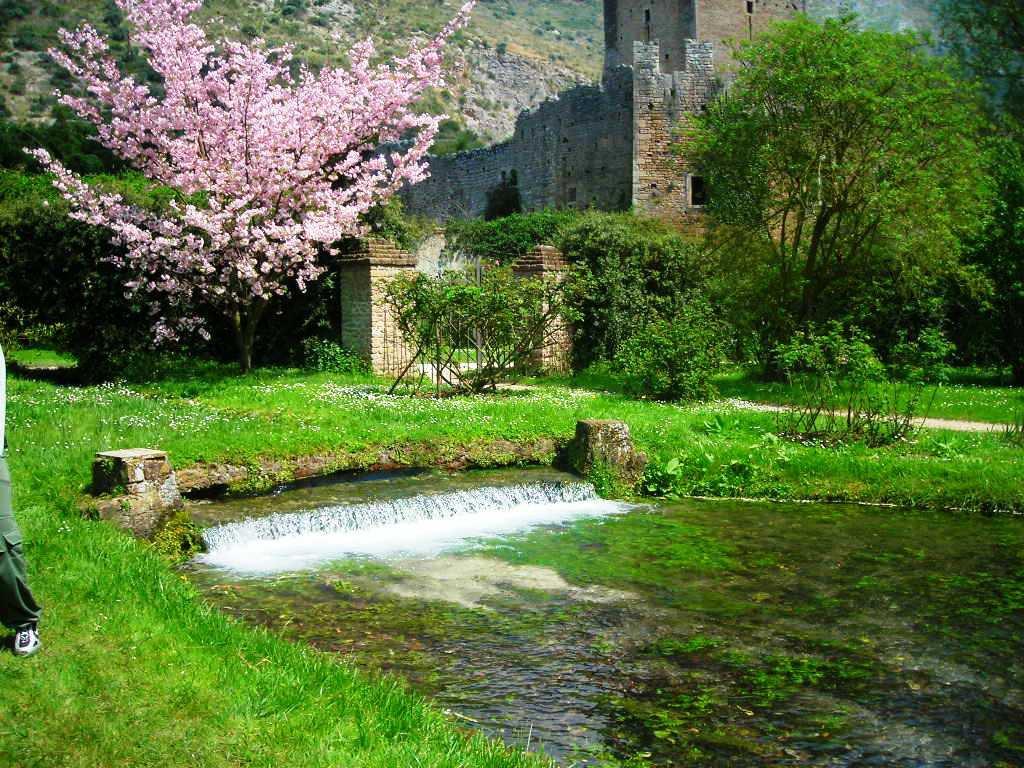 Il giardino di ninfa baia d 39 oro - Piscine roma nord ...